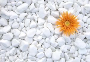 OBLÁZKY MRAMOROVÉ White Thasos, okrasné kameny